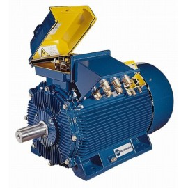 IE2 class efficiency electric motors, MAQ BAQ series
