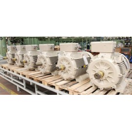 Electrical Atex Motors