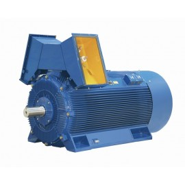 Medium voltage motors