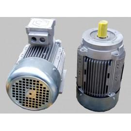 Special voltage motors